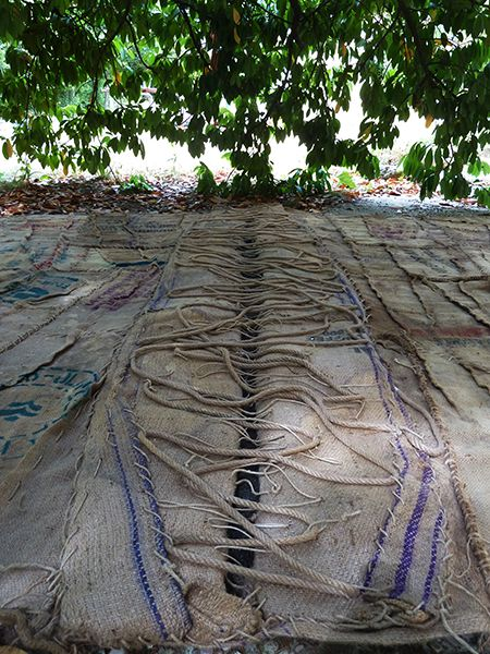 Patrizia Trevisi - Terra Sterile - Land Art Furlo
